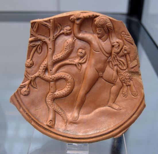 Herakles kæmper med Ladon. Lertavle fra Staatliche AntikenSammlungen. Source: Wikipedia