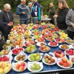Nonnetit Æbleværksted