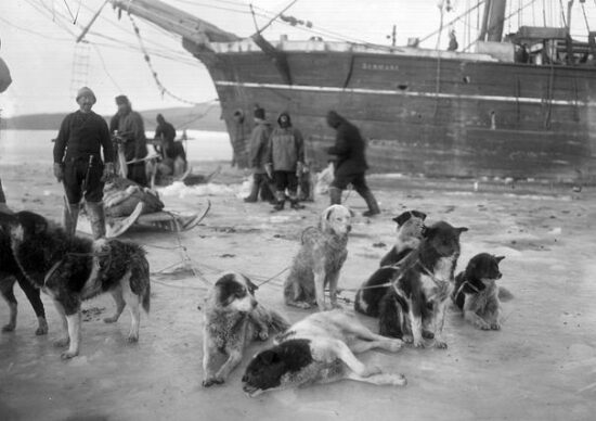Danmark Ekspeditionen 1906-08 venter på at at Ludvig Mylius-Erichsen, Jørgen Brønlund og Niels Peter Høegh Hagen skal vende tilbage til skibet. De kom aldrig.